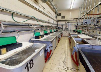 Experimentální rybochovné pracoviště a pokusnictví FROV